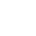 icon-org